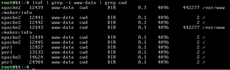 Linux Malware